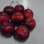 普通のリンゴにみえるけど・・・